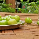 MBL tomatillos