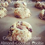 almond coconut cookie feature