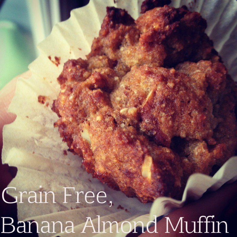 bannanut nut muffin feature