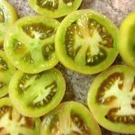 fried green tomatoes 226