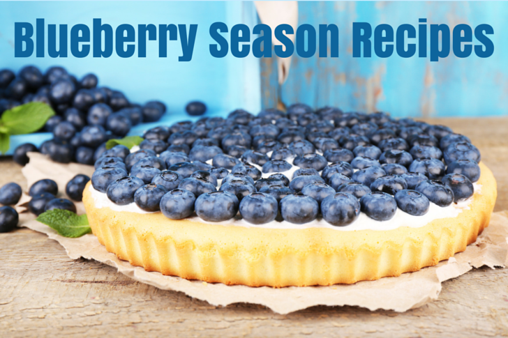 Blueberry Season Recipes Round Up Featured Blog Post Image (1)